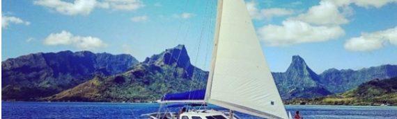 Catamaran House Boat For Sale !