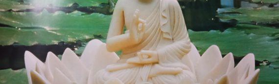 Rare Nepalese Buddha Statues!