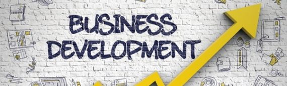 Business Development Executive Available on BBX