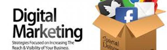 Digital Marketing Expertise Available